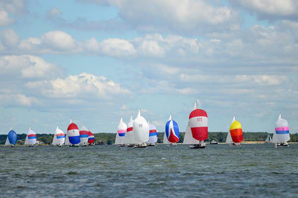 Colorful Boat Races on the Tred Avon River
